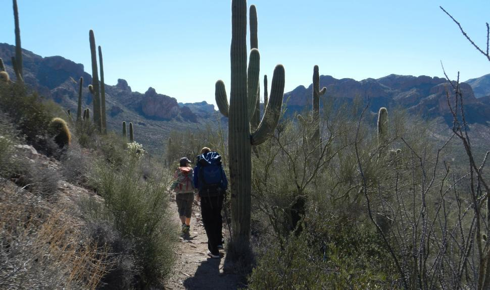 Superstition Wilderness – Dutchman Loop