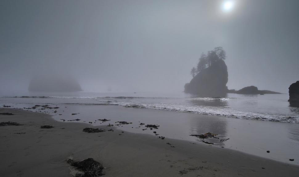 Shipwreck Coast in the fog Olympic National Park