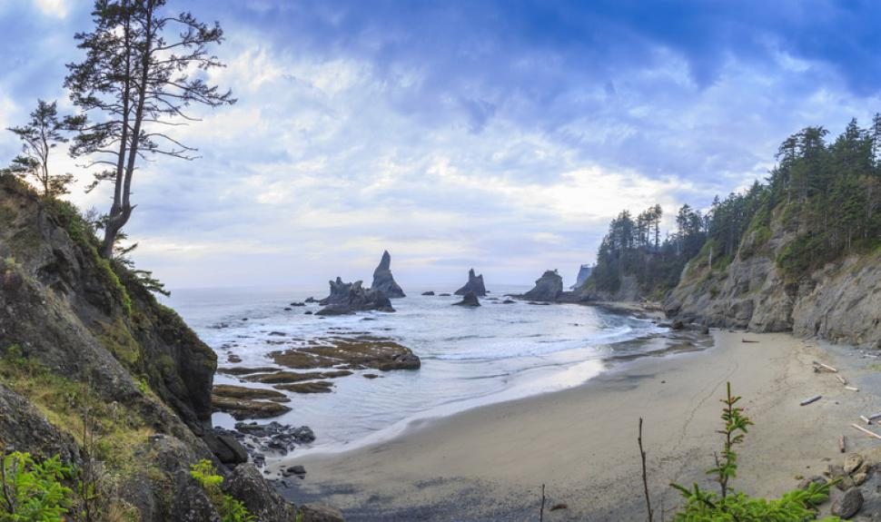 Olympic National Park – Shi Shi Beach